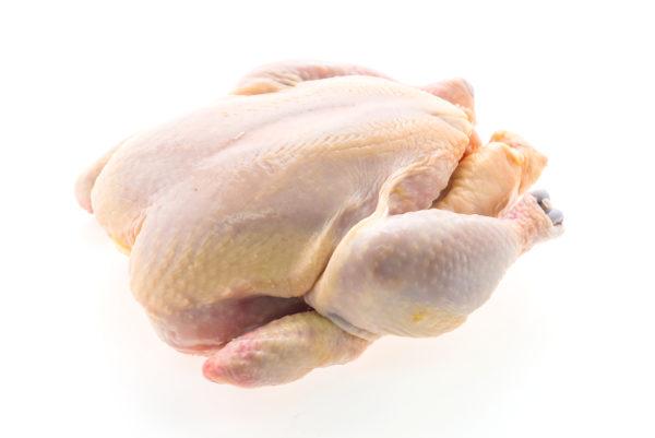 Ūkininko viščiukas